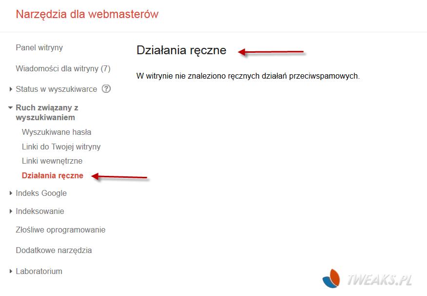 pre_1376054090__dzialania_reczne_filtr_g
