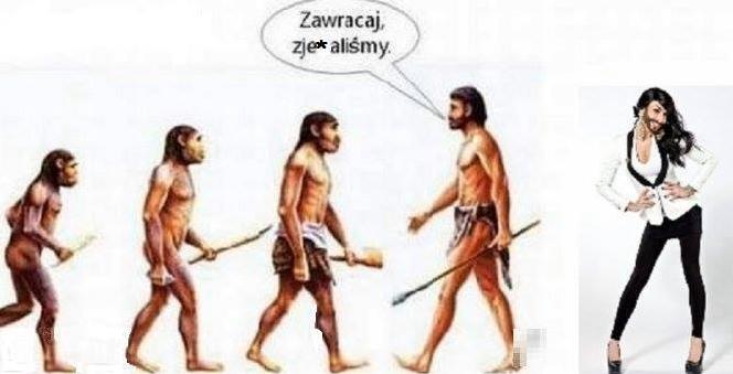 pre_1400068634__ewolucja_baba_z_broda.pn